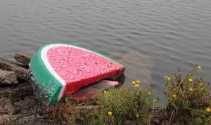 The Watermelon - 017